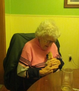 Grandma with a Kitten