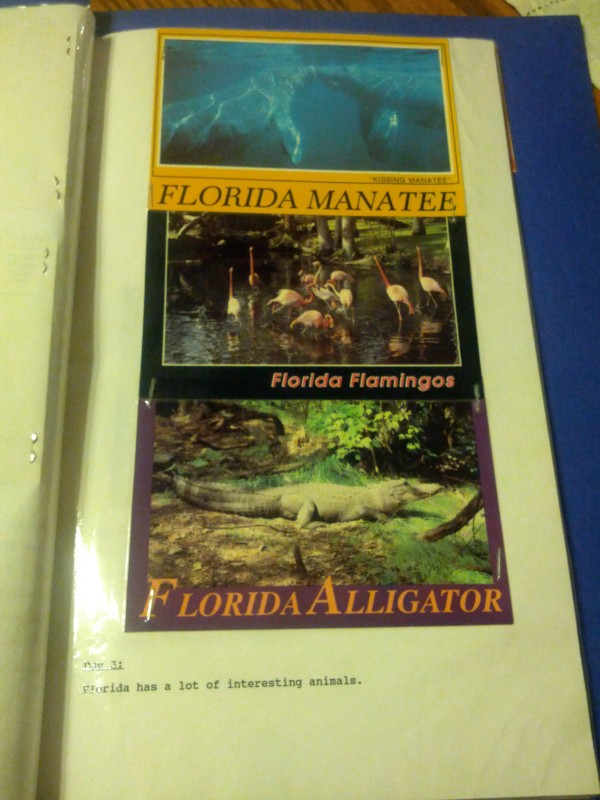 Animals of Florida